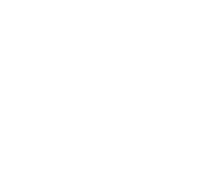 real estate inspections icon