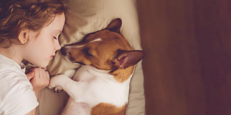 girl sleeping with sweet puppy